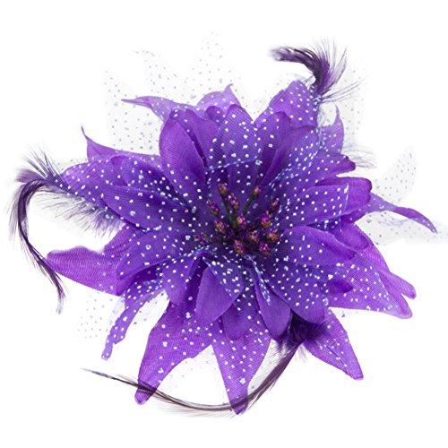 (BAOBAO Women Wedding Party Mesh Flower Feather Hair Clip Fascinator Hairband Headband)