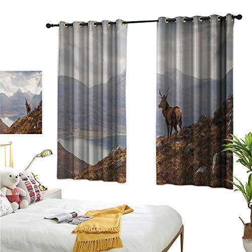 (Warm Family Thermal Curtains Deer,Wild Stag Overlooking Loch Torridon and Dramatic Western Ross Mountain Nature View,Brown White 72