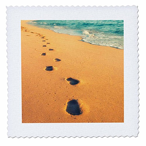 3dRose Danita Delimont - Beaches - USA, Hawaii, Kauai, Kapaa, beachfront. - 18x18 inch quilt square (qs_259244_7) by 3dRose