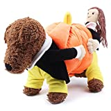 HuntGold Novel Carring Pumpkin Fancy Dog Puppy Pet Halloween Costumes Coat Clothes L