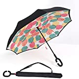Beautiful Baby Pig Umbrellas For Ladies And Generally With Everyone or Everywhere.