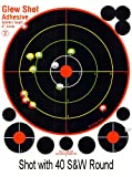 10 inch target - 25 Pack - 8