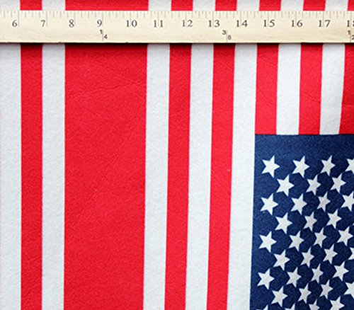 Polar Fleece Fabric PrintsAMERICAN FLAG/60 Wide/Sold by the