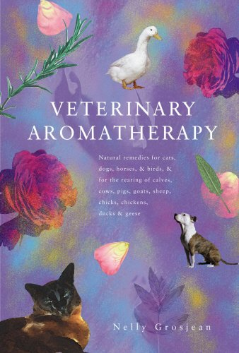 Veterinary Aromatherapy (Horse Chick)