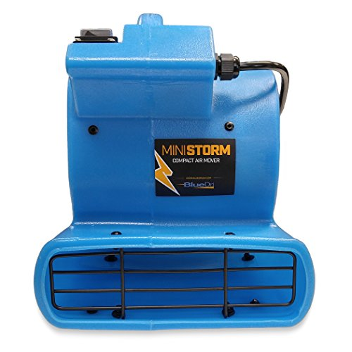 BlueDri Mini Storm 1/12 HP Mini Air Mover Carpet Dryer Floor Squirrel Cage Blower Fan for Home Floors and Carpets, Blue