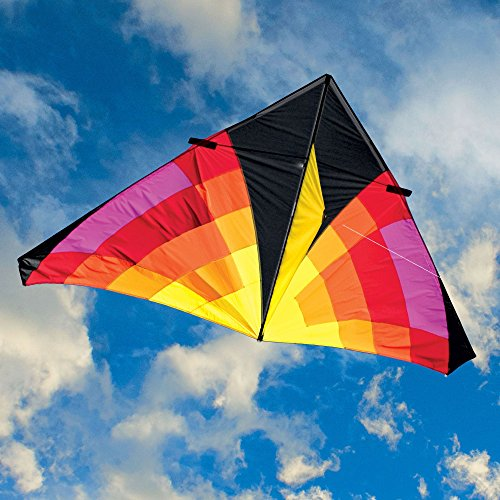 Into The Wind 9-ft. Light Levitation Single Line Delta Kite by Into The Wind
