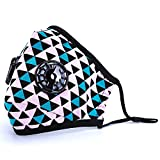 #8: ANALAN Mask Anti Pollution Mask Washable Dust Mask Air Filter Mask for Pollution Smoke Allergy Mask with Filter 4 Pcs PM2.5 (Unisex Size)