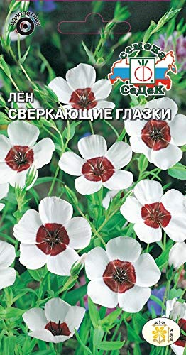 (Russian Flower Flax Glittering Eyes (Grandiflora, White and Blood-red Center). Euro 0.4)