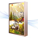 Led Mural Lights Art,Ultra-Thin,Bedroom,Bedside lamp,Living Room, Study,Decorative Painting Lights-B 40x60cm(16x24inch)