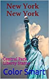 New York New York: Central Park Liberty Statue (Photo Book Book 76)