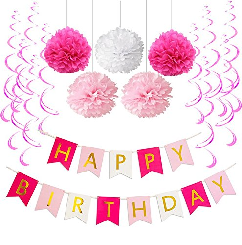Sopeace Birthday Party Pack Pastel Pink Fuchsia Happy Bunting Poms And Swirls