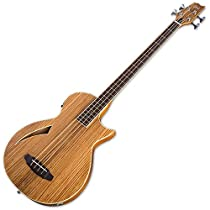 ESP LTL4ZNAT 4-String Acoustic-Electric Bass Guitar