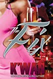 The Fix (Urban Books)