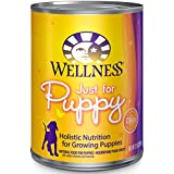 Wellness Complete Health Natural Wet Canned Puppy Food, Chicken & Salmon, 12.5-Ounce Can (Pack of 12)