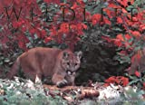 Wildlife of North America, Thomas A. Lewis, 0883637987