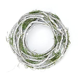 Northlight White Twig And Green Moss Artificial Wreath - Small 7