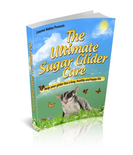 Ultimate Sugar Gilder Care Guide