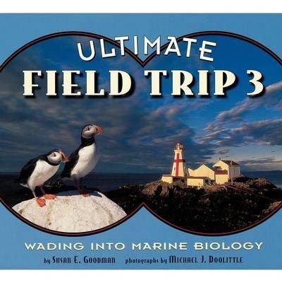 Houghton Mifflin Soar to Success: Paperback Level 7 Ult Field Trip (Read Soar to Success 1999)