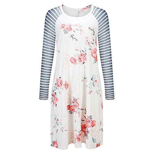 Exlura Women's Floral Print Casual Long Sleeve A-line Loose T-Shirt Dresses Knee Length