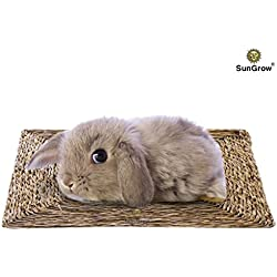 SunGrow Natural Seagrass Mat : Hand Woven, Safe & Edible for Hamsters, Rabbits, Parrot: Water Resistant & Non-Toxic Chew Toy Bed