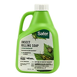 Safer Brand 5118-6 Insect Killing Soap Concentrate 16oz