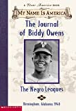 The Journal of Biddy Owens, Walter Dean Myers, 0439445728