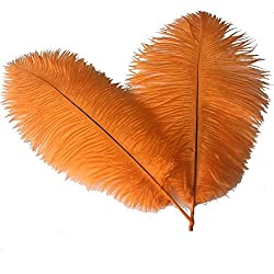 Sowder 16-18inch(40-45cm) Ostrich Feathers Plume Wedding Centerpieces Home Decoration Pack of 10pcs(Orange)