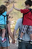 Piggyback Rider SCOUT model - Child Toddler Carrier Backpack for Hiking Trails, Camping, Fitness Travel