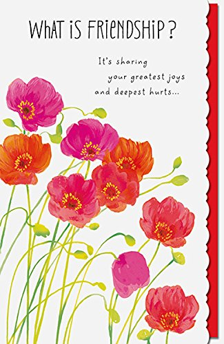 Amazon what is friendship nice verse poppies friend birthday what is friendship nice verse poppies friend birthday greeting card m4hsunfo