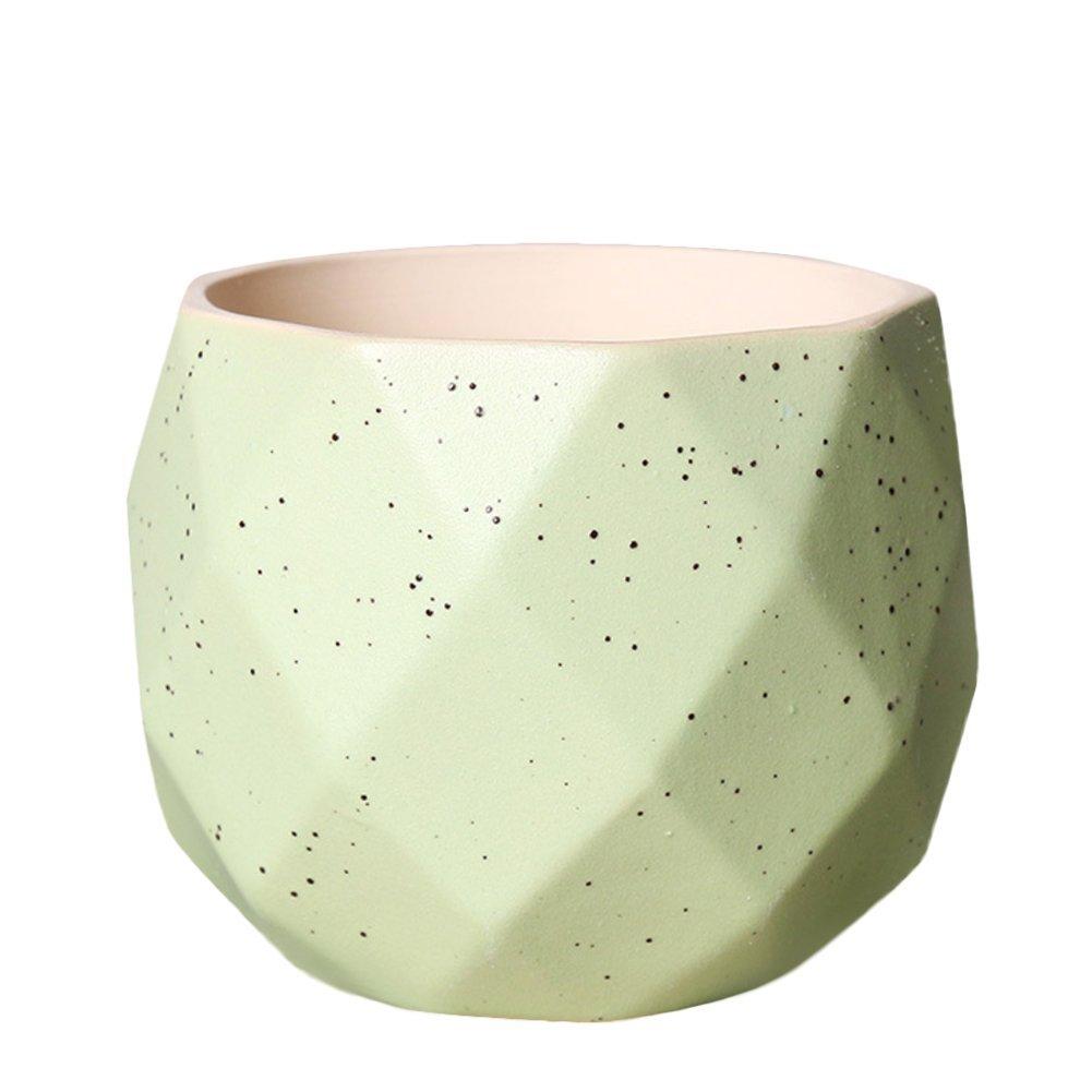 Wicemoon Pots En Céramique Série de balle /Plante Succulente/Plante en Pot/Cactus/Pot De Fleur/Cultiver: Amazon.es: Jardín