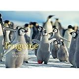 Pinguine 2018