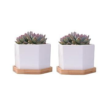 Vorcool Weisse Sechseckige Keramik Blumentopfe Fur Sukkulenten
