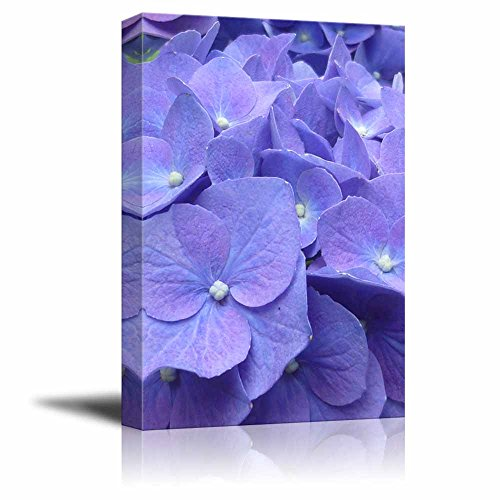 wall26 Canvas Prints Wall Art - Hydrangea Flowers | Modern Wall Decor/Home Decoration Stretched Gallery Canvas Wrap Giclee Print. Ready to Hang - 24