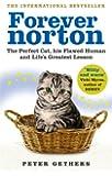 Forever Norton