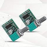 Soapow 2Pcs PAM8403 Mini 5V Digital Power Amplifier