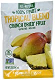 Sensible Foods Fruit Snacks, Tropical Blend, (Pack of 48)