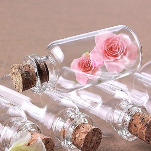 Mikey Store 24pcs Small Mini Glass Jars with Cork Stoppers Charms Favors Weddings