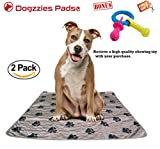 2 pack Washable Pee Pads for Dogs, Pets, Puppy, Housebreaking,Training ,Potty, Reusable XL Dog Mat for Travel,Incontinence,Kennel, Great for Mattress Protection size 32x35 Inches, by Dogzzies
