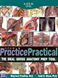 Adam Practice Practical, Adam of Bremen, 1572450878