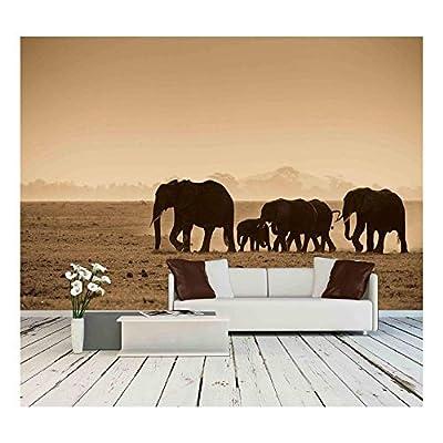 Silhouettes of Elephants in Kenya Wall Decor - Wall Murals