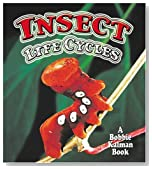 Insect Life Cycles (World of Insects (Crabtree Publishing Paperback))
