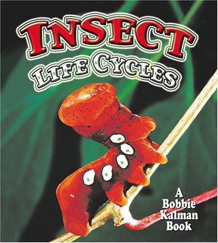 Insect Life Cycles (The World of Insects)