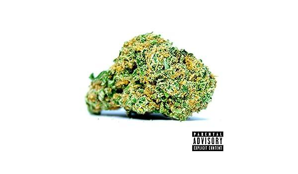 Fronto Leaf by ManishBoyz on Amazon Music - Amazon com