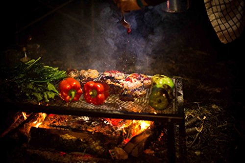 Camp Chef Lumberjack Over The Fire Grill, 18 x 36 Inches