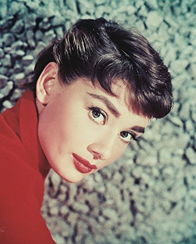 Audrey Hepburn Classic Close-Up Big Eyes 16X20 Canvas Giclee Audrey Hepburn Close Up