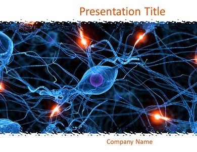 Amazon nervous system powerpoint templates nervous system nervous system powerpoint templates nervous system powerpoint slides toneelgroepblik Image collections