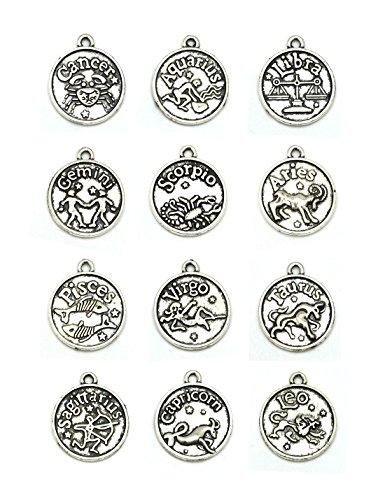 Silver Zodiac Sign Pendant - Round Zodiac Sign Charms 12 Constellation Pendants Beads DIY for Necklace Bracelet Jewelry Making and Crafting, JIALEEY 12 PCS Antique Tibetan Silver