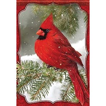 Amazon.com : Christmas Winter Red Cardinals Birds Holiday ...