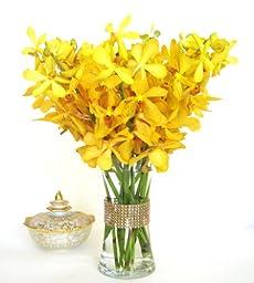Fresh Flowers - Yellow Mokara Ordhids with Vase