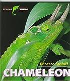 Chameleon, Rebecca Stefoff, 0761401180